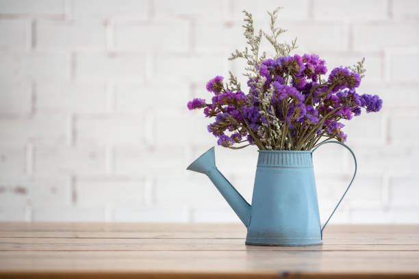 Violet dried flowers i Violet dried flowers in blue tin watering flower pot on wooden table with white brick wall background. dried plant stock pictures, royalty-free photos & images