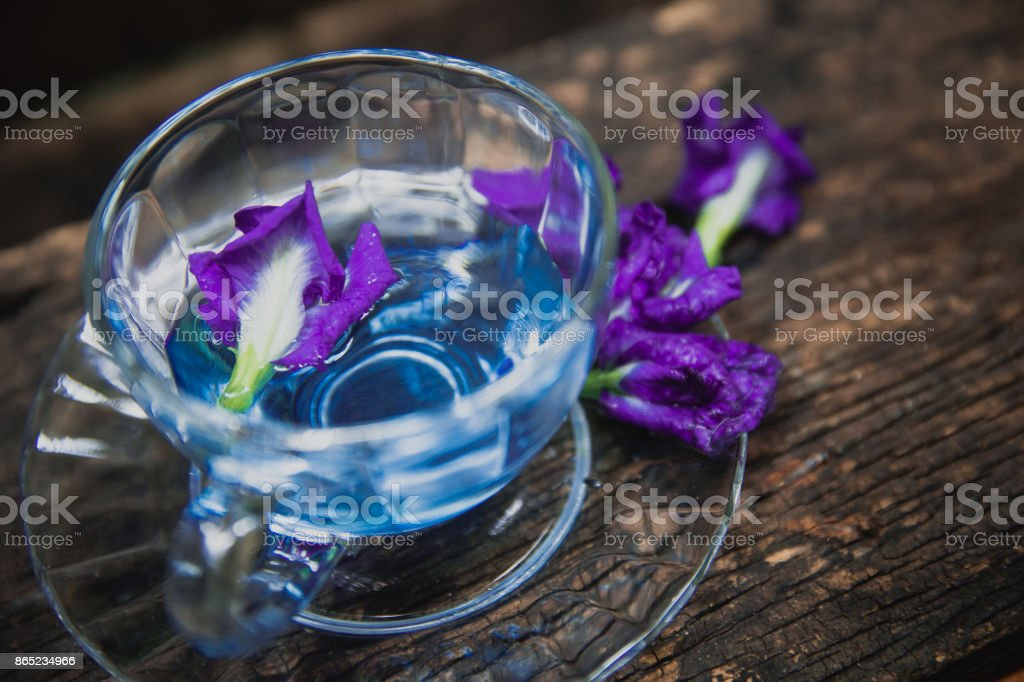 Violet flower Asian pigeonwings or Butterfly Pea Heabal hot drinking tea refresh Thai herb drink on wood background stock photo