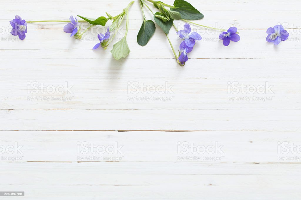 Violet Flowers On Old Wooden Background Stock Photo Download Image Now Istock