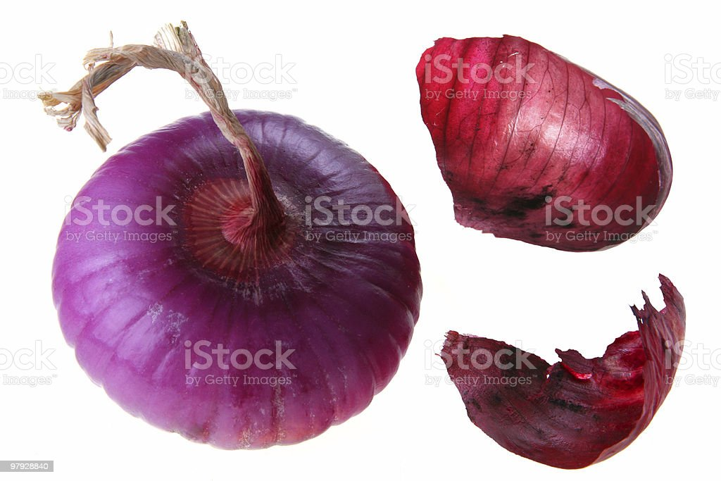 Violet onion royalty-free stock photo