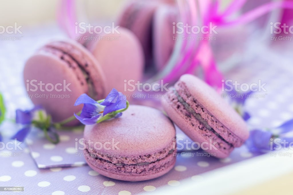 Violet sweet delicious macaroons and fresh violas royalty-free stock photo