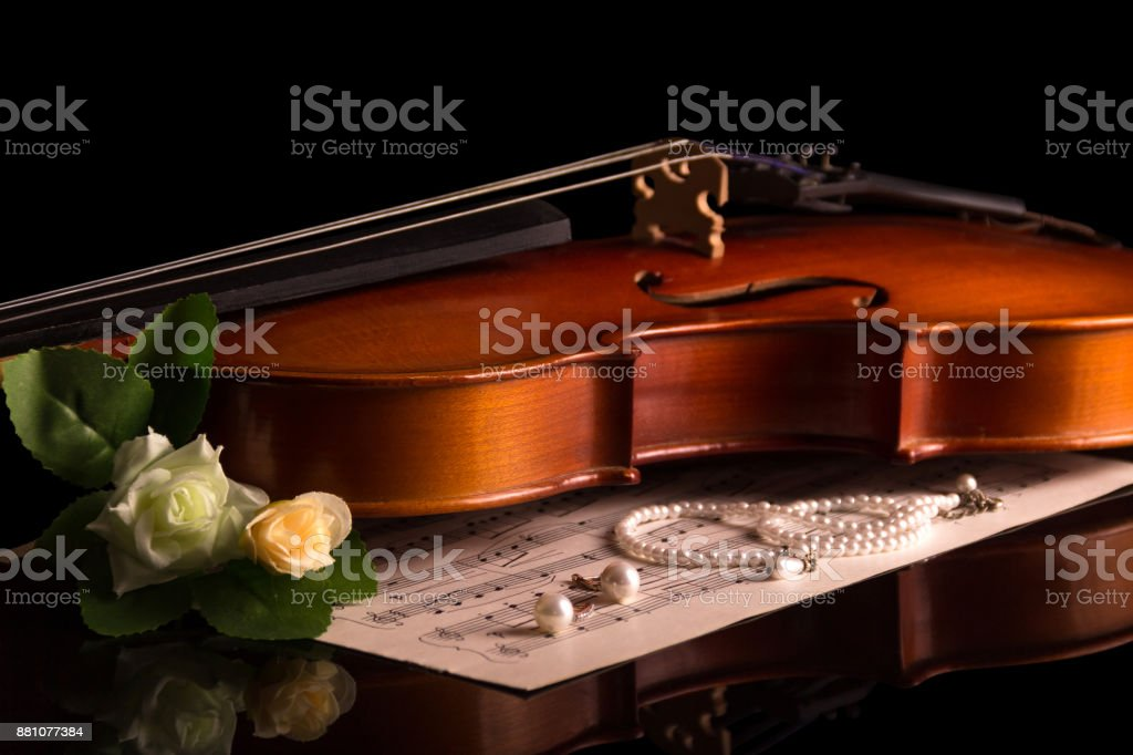 Violin and Notepad with notes, jewelry and flowers isolated on black stock photo