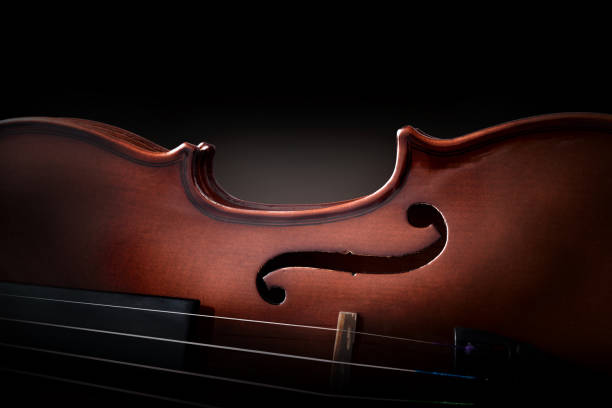 Violin body and strings detail with dark background stock photo