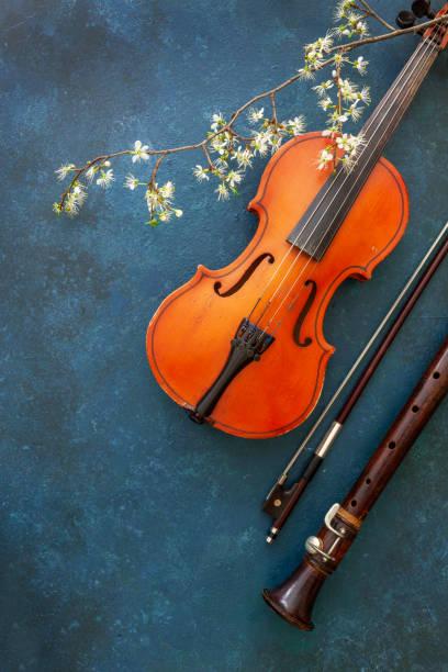 Violino, arco e flauta em um fundo pantone azul 2020 com um ramo de cereja florescendo - foto de acervo