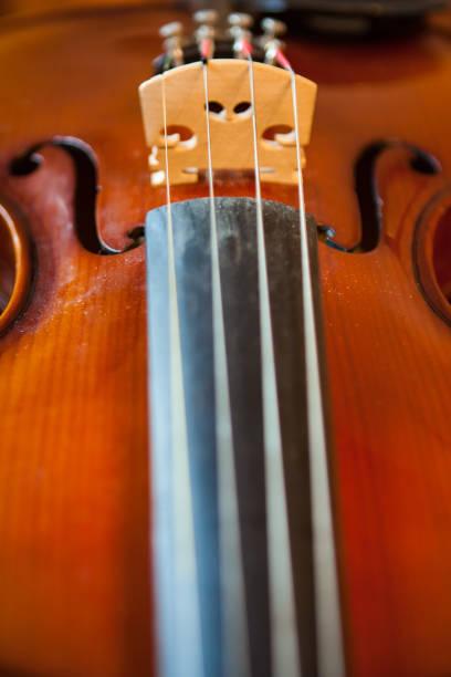 Violin bridge stock photo