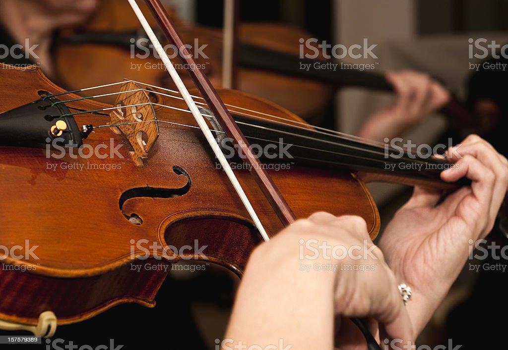 Violin class stock photo