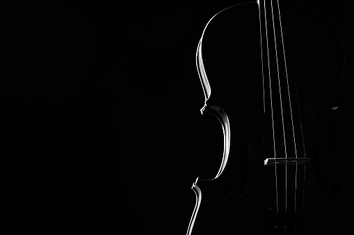 Violin classical music instrument close-up.