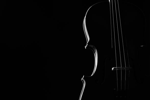 violin classical music instrument close-up. - classical stock photos and pictures