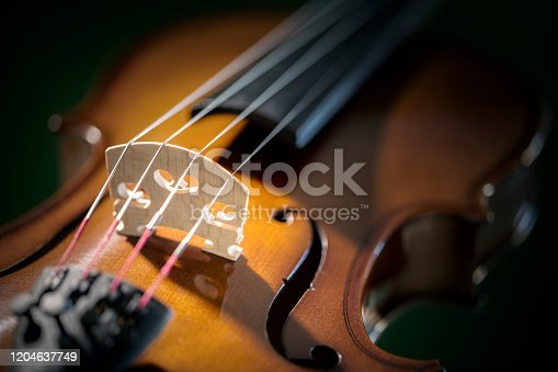 Violin close up on bridge and strings concept for music, education and the arts