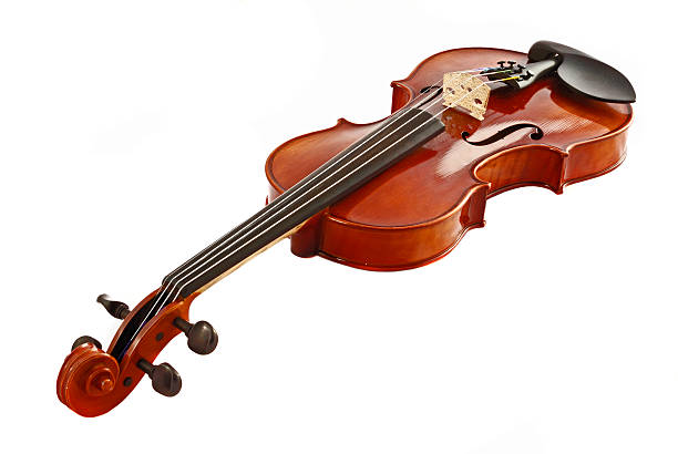 Violine High Key – Foto