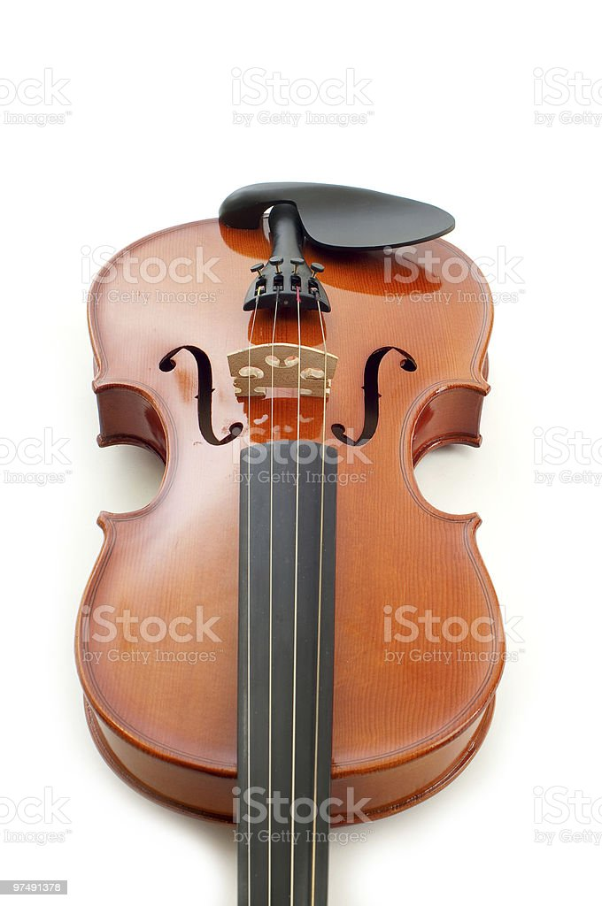 violin in white background royalty-free stock photo