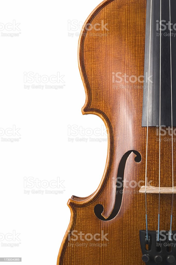 Violin isolated on white royalty-free stock photo