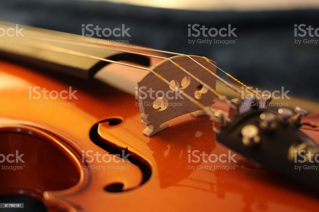 Violin Macro stock photo