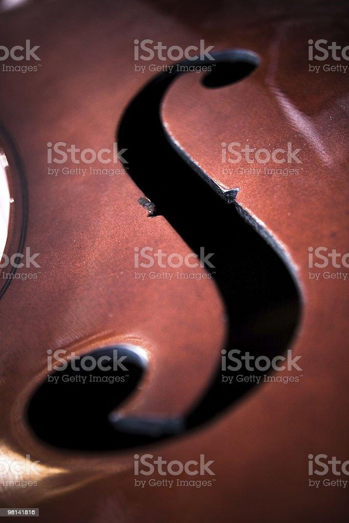 바이올린 접사를 royalty-free 스톡 사진