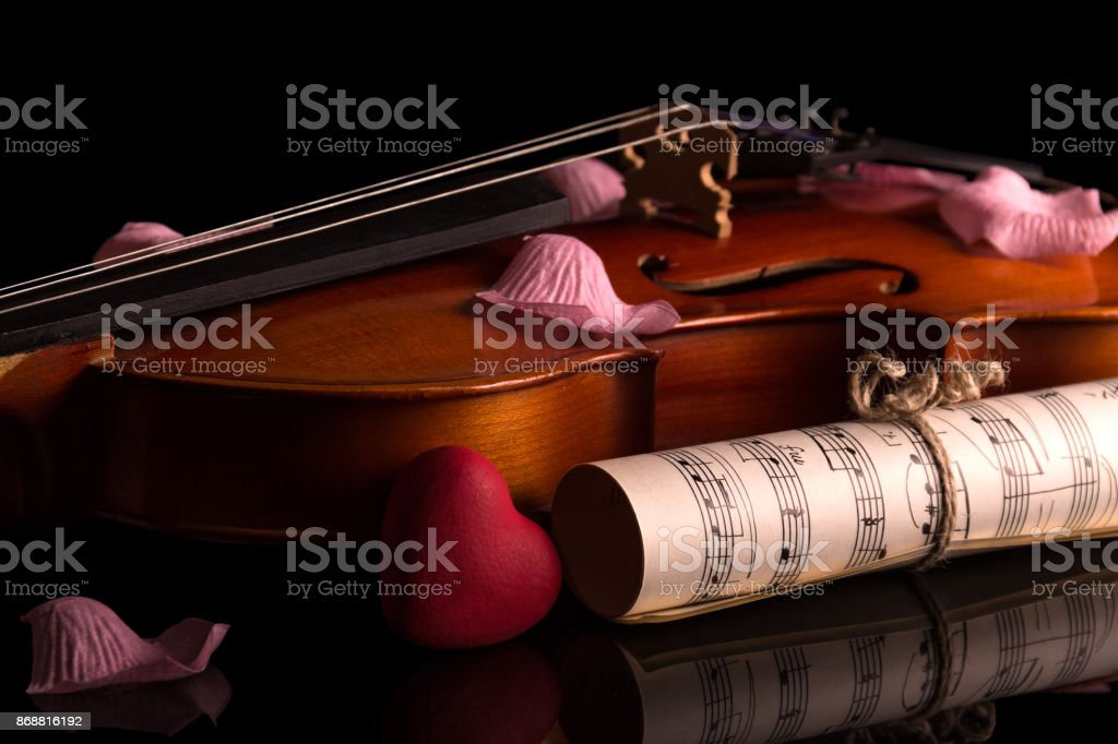 Violin, music notes and rose petals isolated on black stock photo