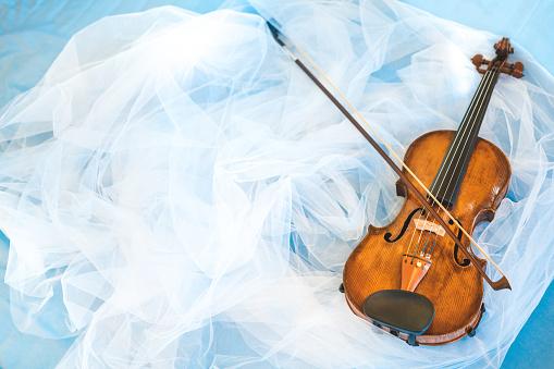 Violin, Musical Instrument, Violin Scroll, Veil, Copy Space