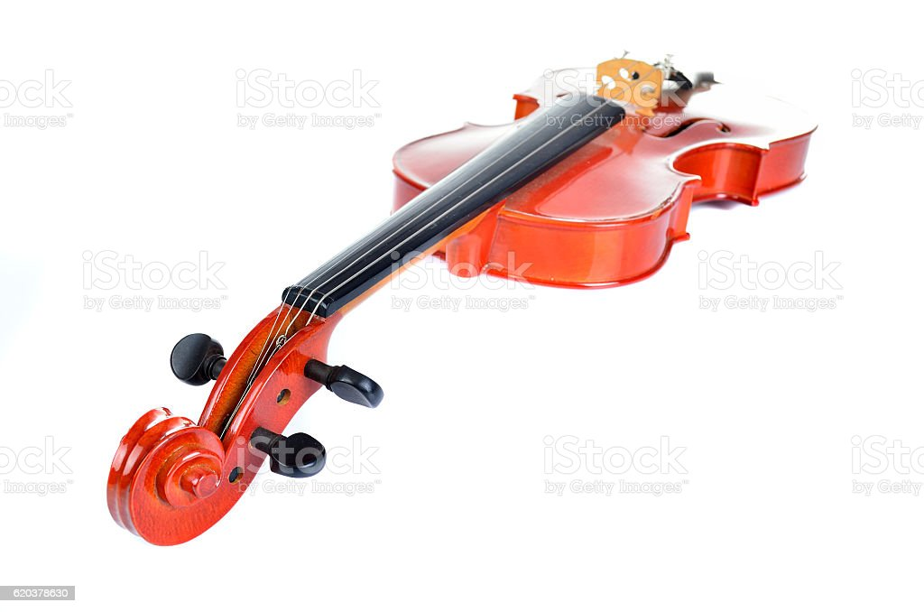 Violino no fundo branco foto de stock royalty-free