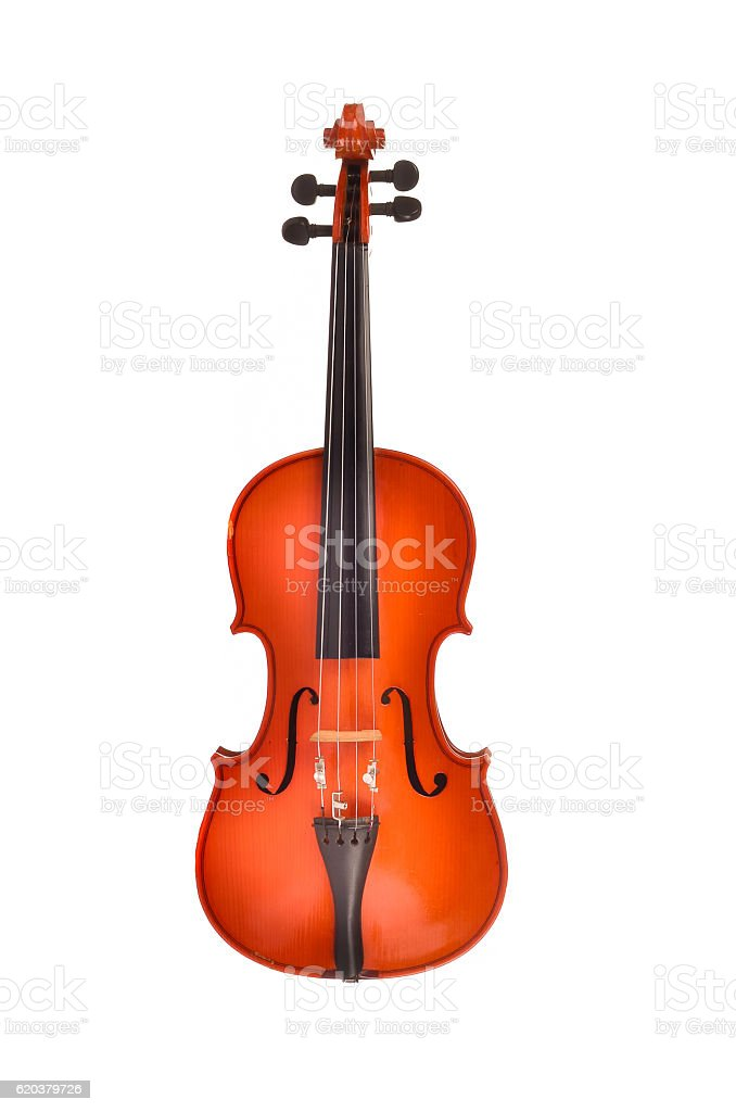 Violino no fundo branco foto de stock royalty-free