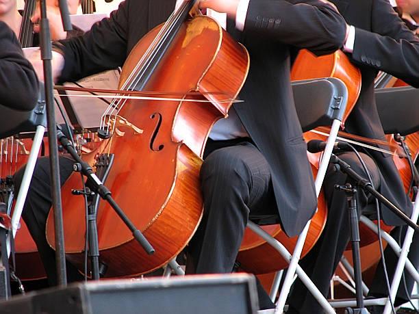 violine performance - philharmonie stock-fotos und bilder