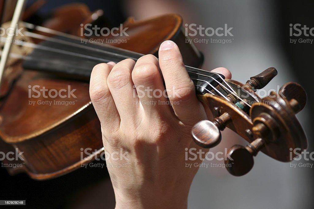 Violin royalty-free stock photo