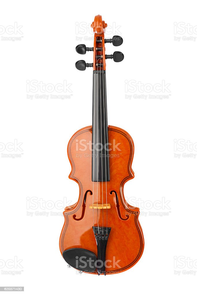 Violino foto de stock royalty-free