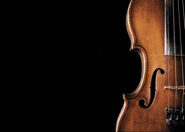 Violin. Wooden classic violin isolated on  background string instrument stock pictures, royalty-free photos & images