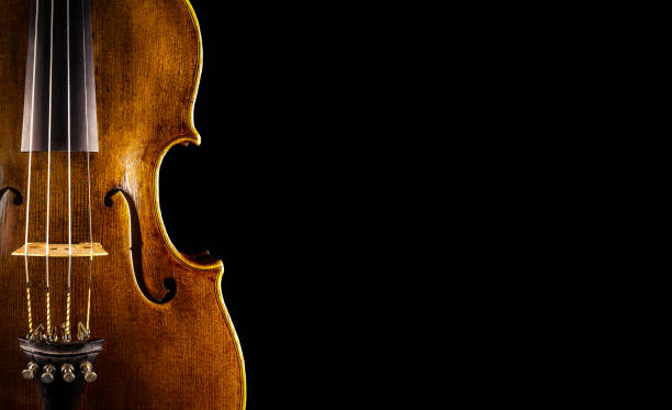 violin close up of a violin string instrument stock pictures, royalty-free photos & images