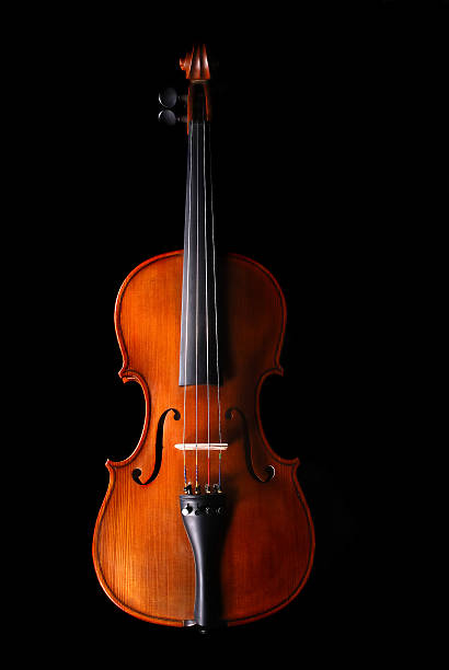 Violin  string instrument stock pictures, royalty-free photos & images