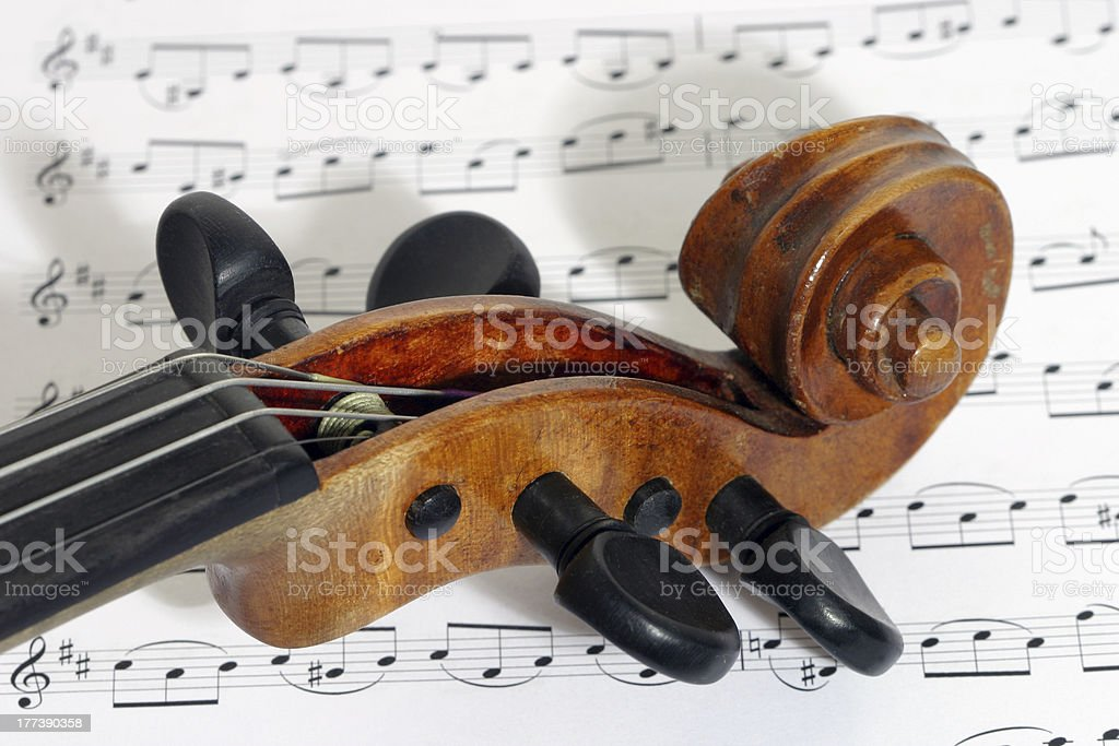 Violin rose and pegs royalty-free stock photo