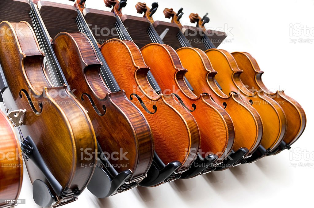 Violin row royalty-free stock photo