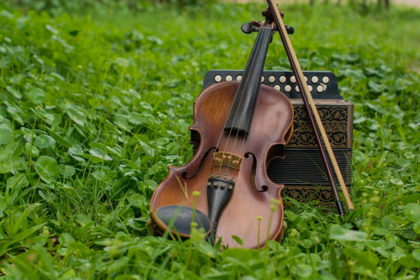 violin with accordion put on the lawn wait for the party tonight - accordion stock photos and pictures
