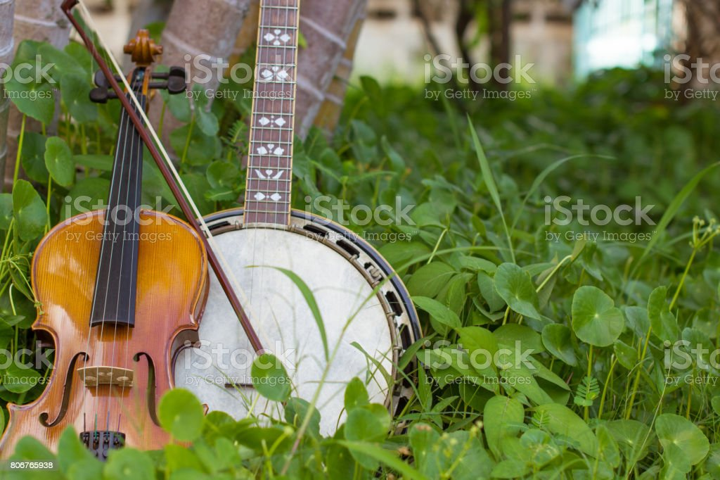 Violin with banjo, bluesgrass musical instrument Placed beside the tree on the farm. To play the rest of the workers. stock photo