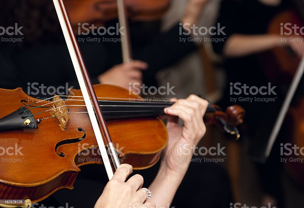 Violinists royalty-free stock photo