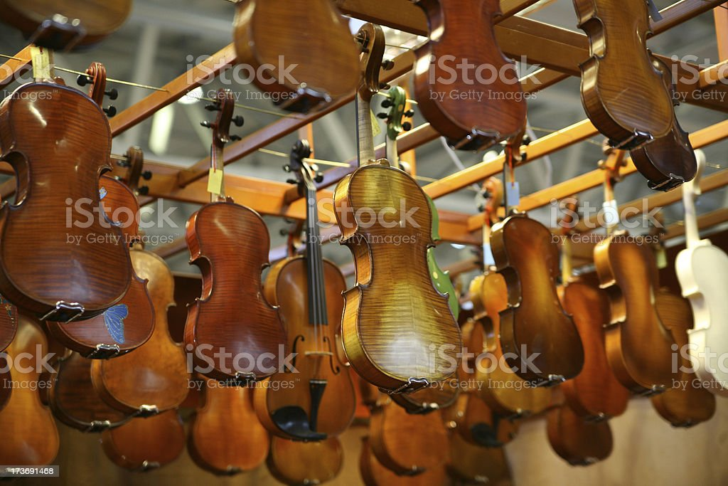 Violins all over royalty-free stock photo