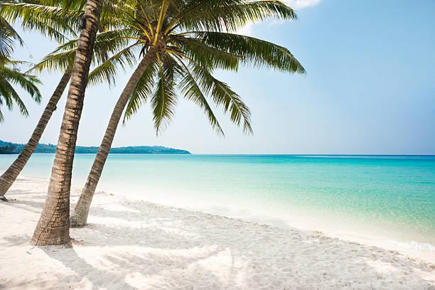 Virgin Island – Foto