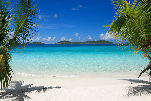 virgin islands beach - caribbean stock pictures, royalty-free photos & images