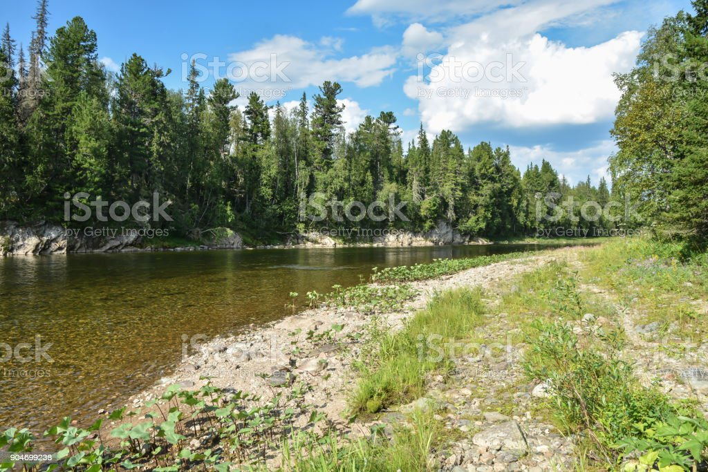 'Virgin Komi Forests' is a UNESCO World Heritage Site. stock photo