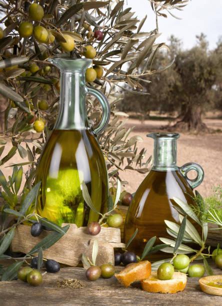 virgin aceite de oliva - foto de stock