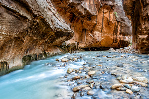 Virgin river in the narrows in Zion National Park, Utah, USA breathtaking scenery while wading through Virgin river in the narrows in Zion National Park, Utah, USA zion national park stock pictures, royalty-free photos & images