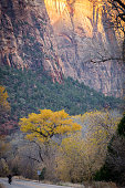 hiking the observation point trail in zion national park in the usa