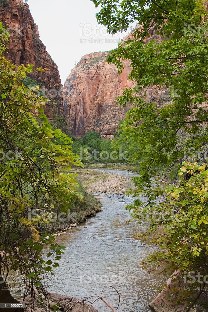 Virgin River in Zion National Park royalty-free stock photo