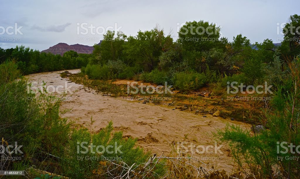 Virgin River Muddy stock photo