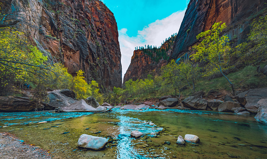 View of Kolob Canyons red rocky cliffs near Hop Valley Trailhead in Zion National Park Utah and mountain meadow with scattered pine trees