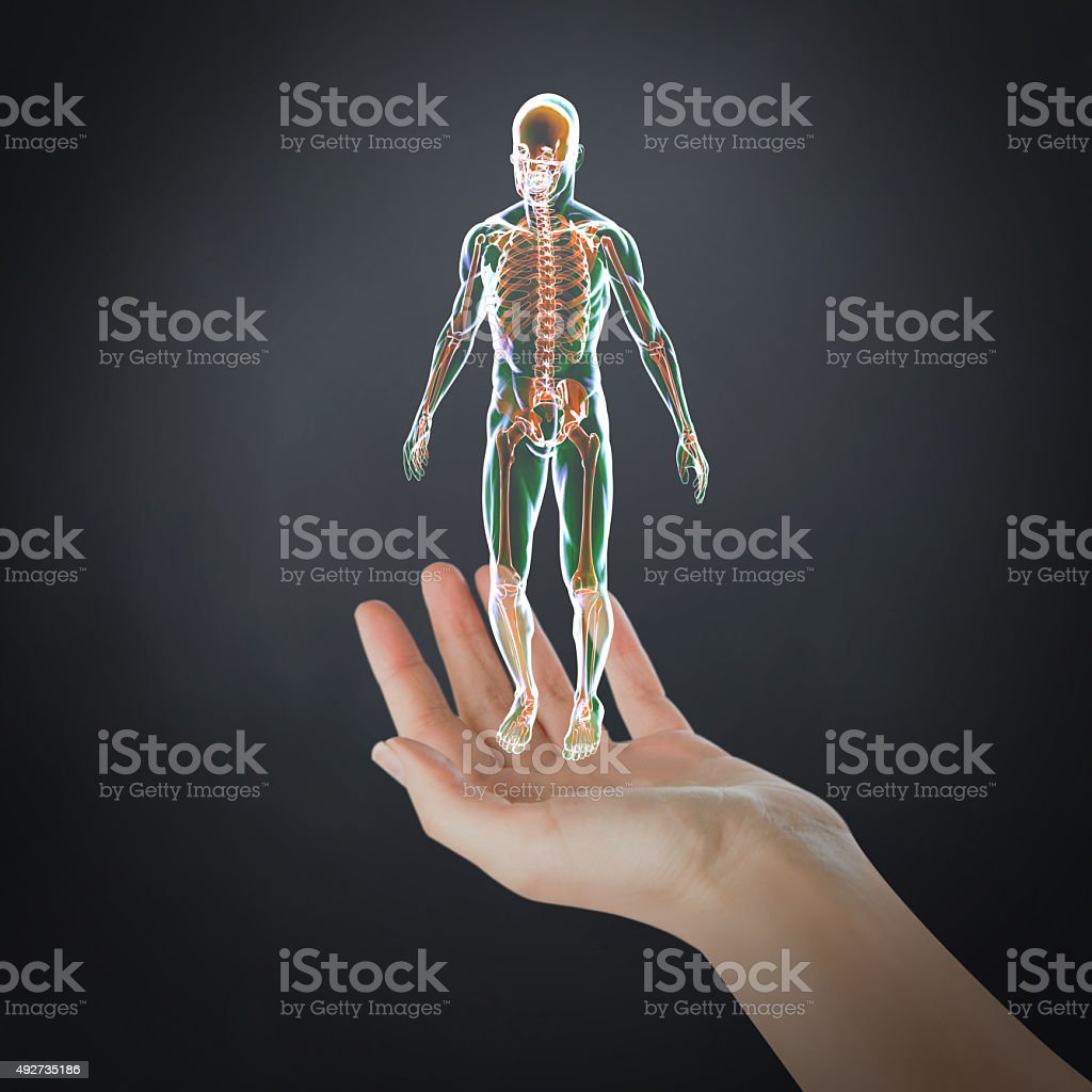Virtual Human Body Presentation stock photo