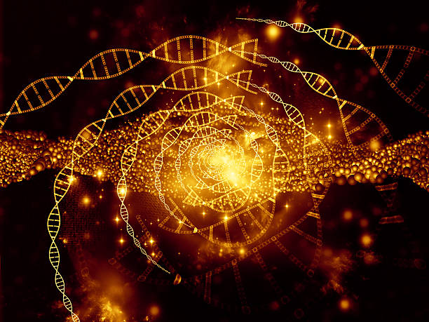 virtual life of dna - elementary particle stock photos and pictures
