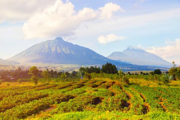 Virunga-Berge und Vulkane in Ruanda – Foto