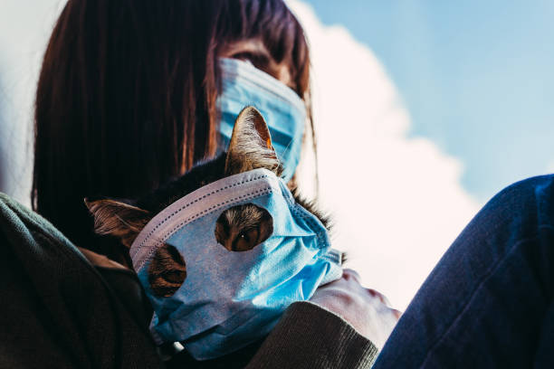Virus a woman is sitting with a cat in a protective gauze mask from picture id1209886527?b=1&k=6&m=1209886527&s=612x612&w=0&h=9nci8gm0fvisbsmz6 wpzlcnuzxosmbuyiafeer9nyu=