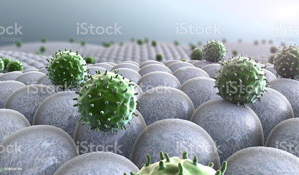 Virus, Zellen – Foto