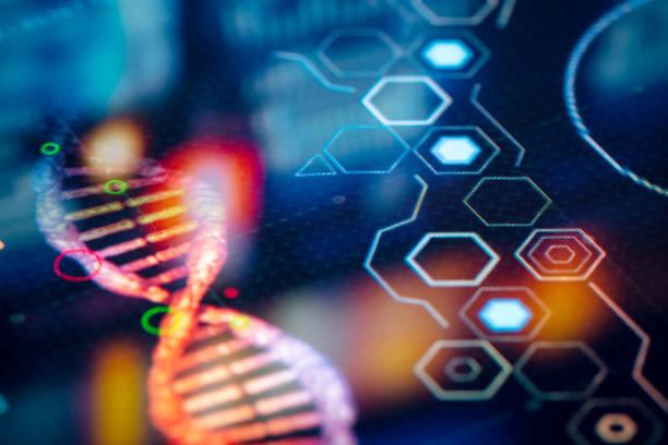investigación del laboratorio de virus - biología fotografías e imágenes de stock