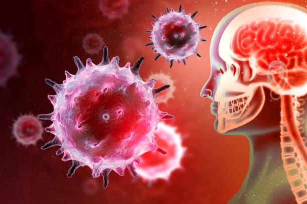 virus of bacteriën die de menselijke hersenen aanvallen. virale ziekte. 3d illustratie - parasitisch stockfoto's en -beelden